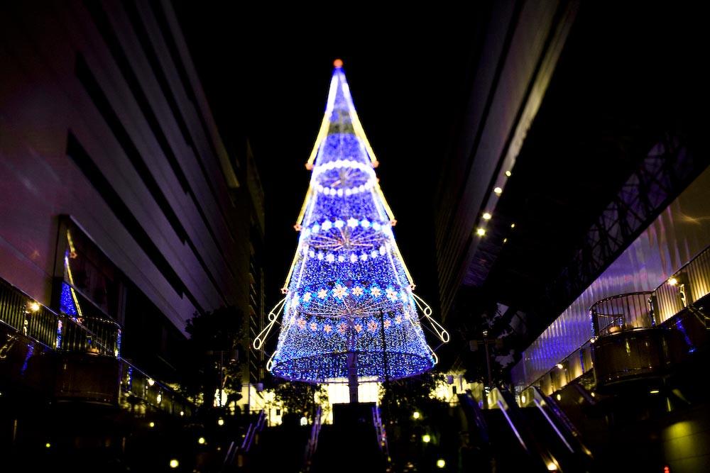 浜松の夜_c0150383_1184353.jpg