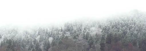 雪の降り始めと来年の仕事_e0054299_1422462.jpg
