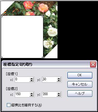 d0048312_20333195.jpg