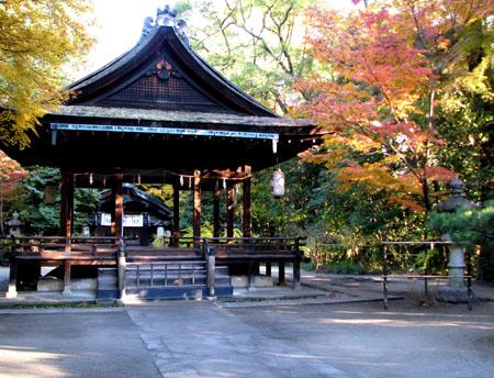 梨の木神社 紅葉の盛り_e0048413_2112165.jpg