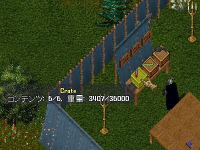 ツリー育成プロジェクト 3_e0089320_3181784.jpg