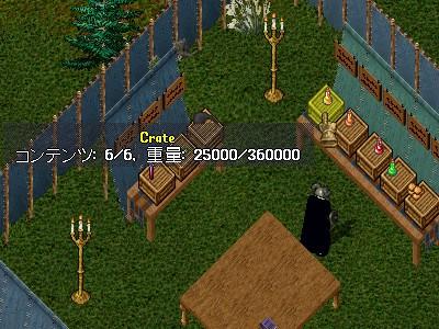 ツリー育成プロジェクト 3_e0089320_320405.jpg
