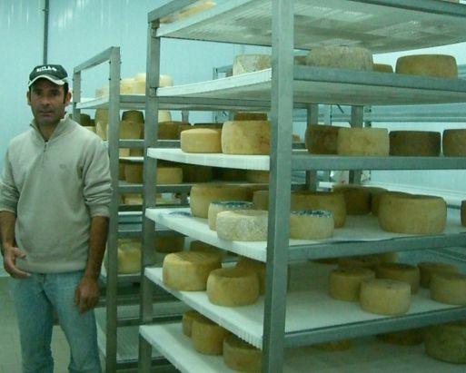 ペコリーノチーズ→サンベネデッド市場_d0041729_2141212.jpg
