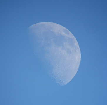 昼間の月と金星(2008年12月6日、7日)_e0089232_16202767.jpg