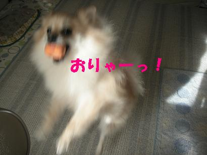 c0179136_426139.jpg