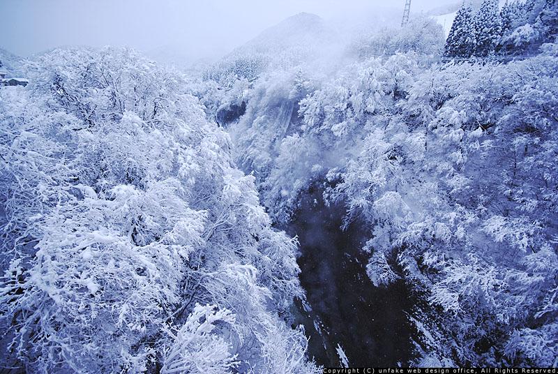 雪化粧_c0176838_12173065.jpg
