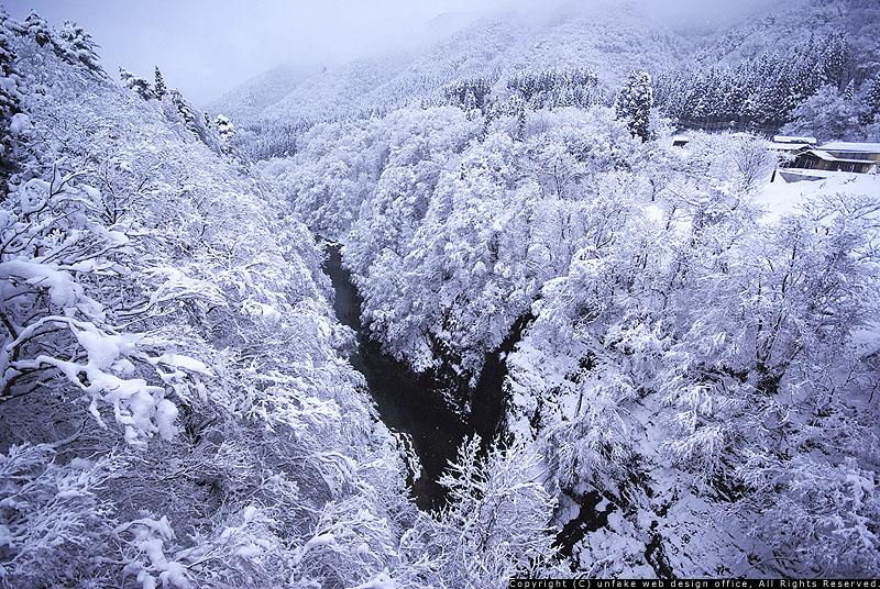 雪化粧_c0176838_12175090.jpg