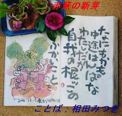 f0179357_7384432.jpg