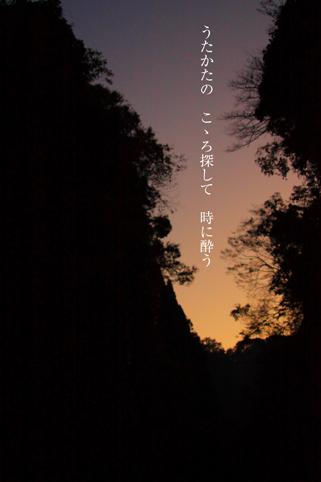 b0146278_537362.jpg