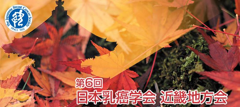 乳癌学会近畿地方会で講演してきました_f0123083_10383553.jpg