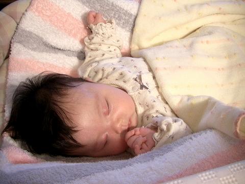 sucre_selさん\'s Babyとおいしいもの_a0039199_22361116.jpg