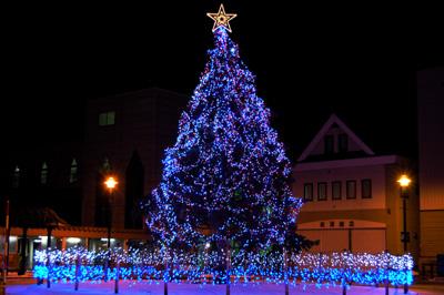 クリスマスツリー_f0096216_21263999.jpg