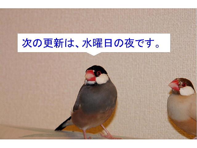 a0019545_18251492.jpg