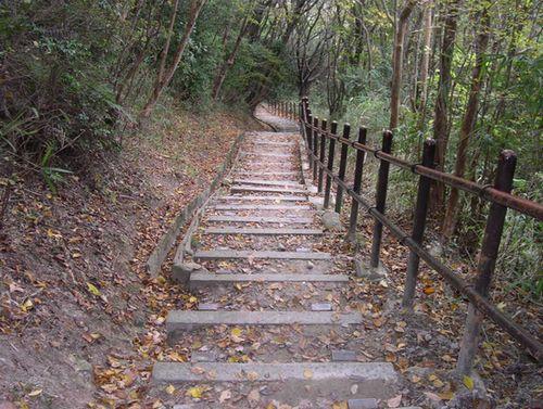 甲山森林公園&藪の中ウォーク_b0025947_19395854.jpg