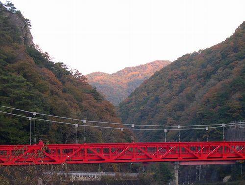甲山森林公園&藪の中ウォーク_b0025947_20205346.jpg