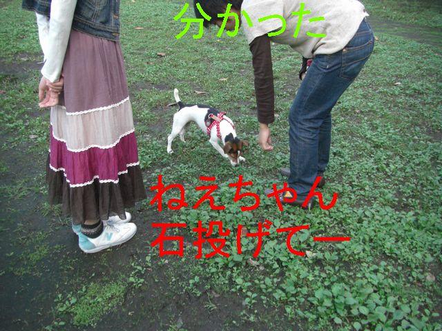 f0053952_19433810.jpg