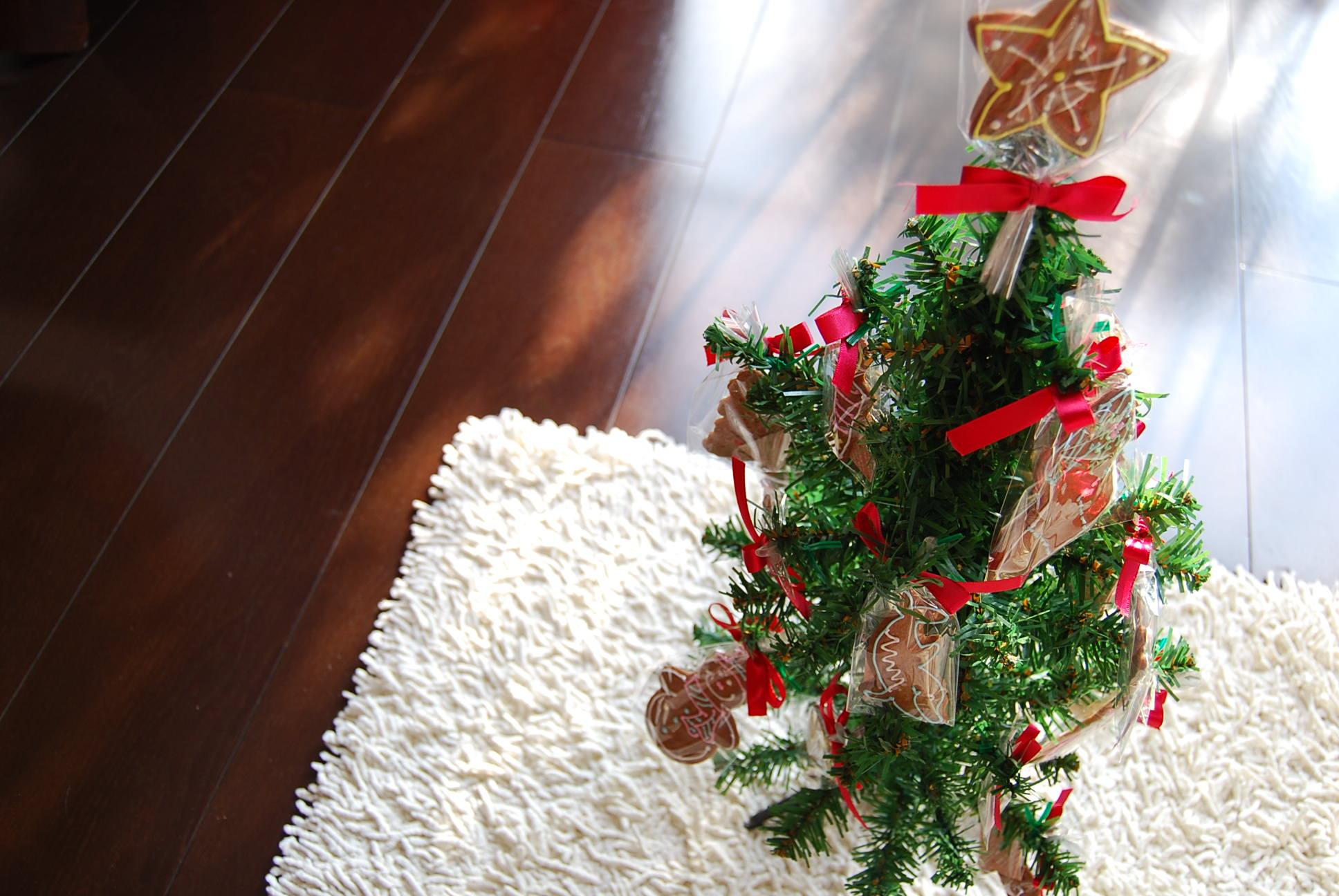 クリスマスツリー_e0142956_1423681.jpg