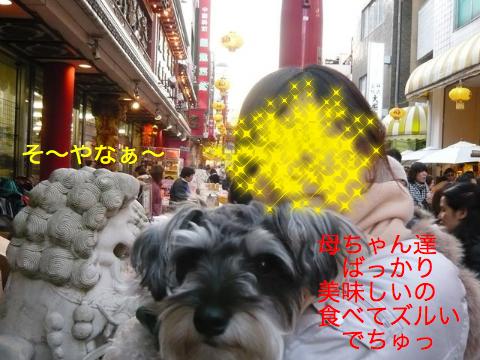 c0177261_11181986.jpg