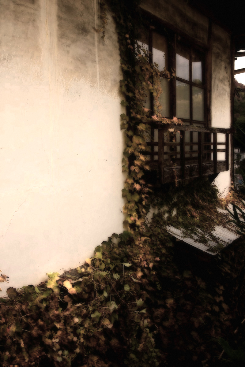 奈良 長谷寺 2_f0021869_20453795.jpg