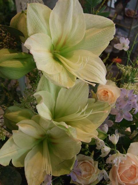 オークリーフ(薄緑色のアマリリスとバラ・ペオニーピンクのアレンジメント)_f0049672_15444892.jpg