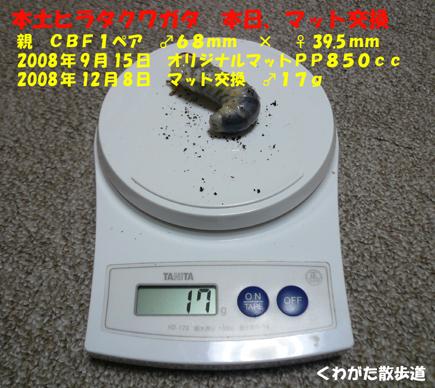 f0183484_18285224.jpg