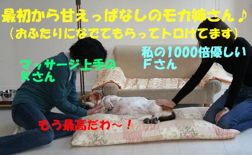f0121712_23193394.jpg