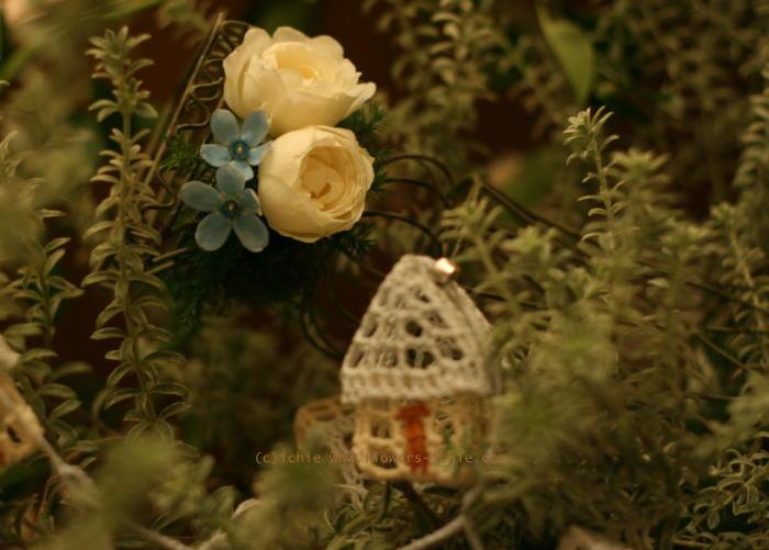 シェ松尾青山サロン様の装花 ブルースターとクリスマス_a0042928_2171290.jpg