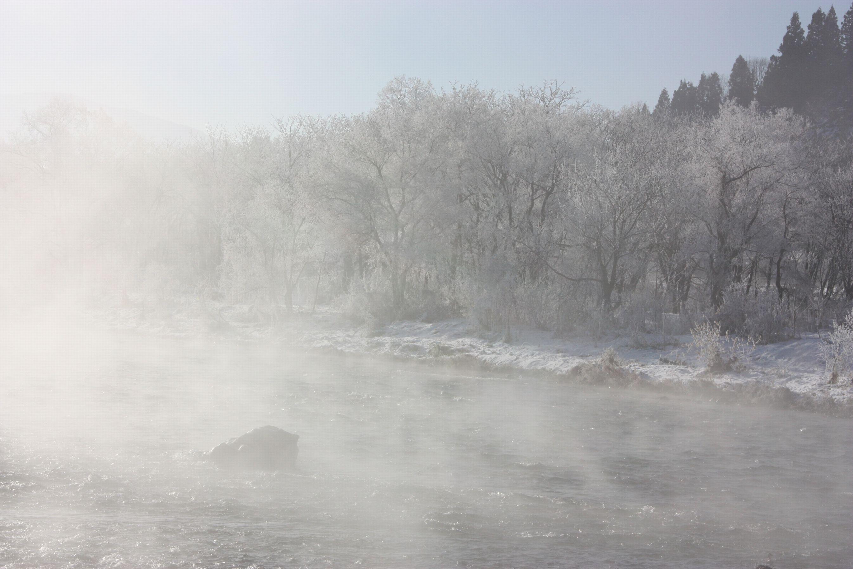 水蒸気の華 北越雪譜、小出の「シガ」_e0150433_15165189.jpg