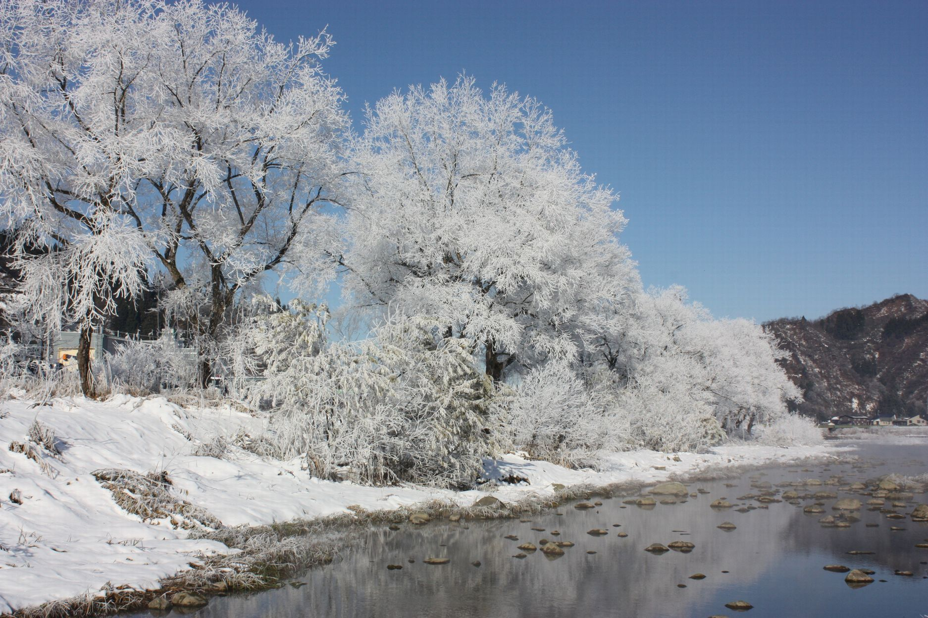 水蒸気の華 北越雪譜、小出の「シガ」_e0150433_15212792.jpg