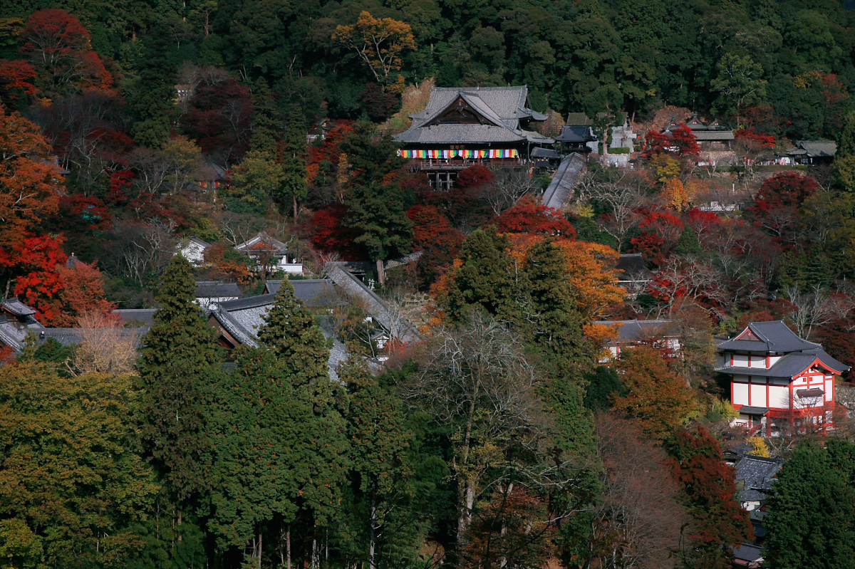 奈良 長谷寺 3_f0021869_1830819.jpg