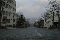b0003089_19115.jpg