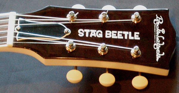1本目の「STAG BEETLE」が完成しましたがぁ!?....._e0053731_20343046.jpg