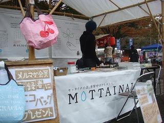 PEACE祭×MOTTAINAIフリーマーケット@代々木公園_e0105047_113670.jpg