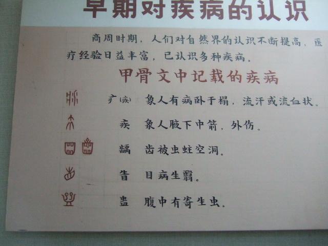 本場・中国で漢方を学ぶ_e0024094_1353466.jpg
