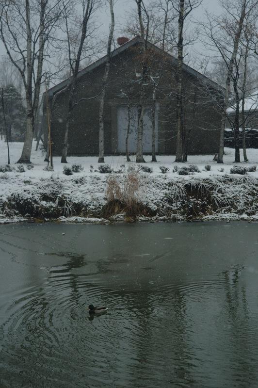 雪の朝のニッカウヰスキー_f0042194_074348.jpg