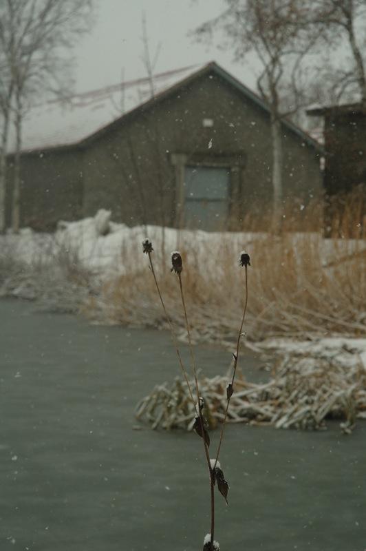 雪の朝のニッカウヰスキー_f0042194_08220.jpg