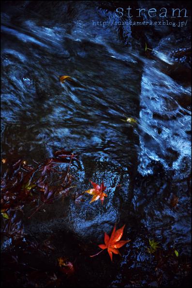 水の流れ_f0100215_22413248.jpg