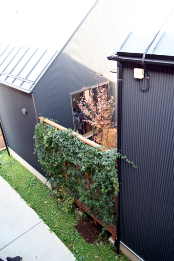 中庭のある家、定期点検に行ってきました_b0142417_16595921.jpg