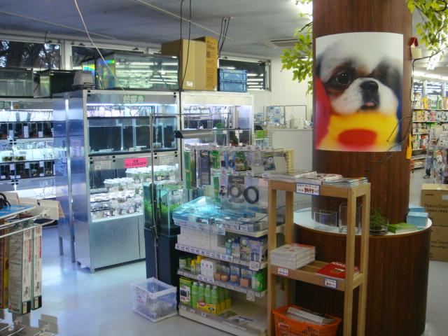 新ペットメイト西宮店OPENのお知らせ!!_f0189122_15145714.jpg