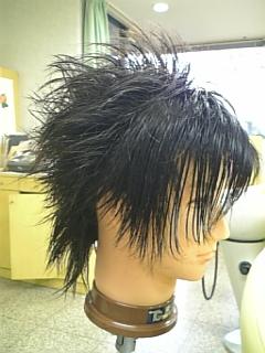 髪の長さの問題②_e0145332_23264998.jpg
