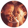 JAZZ的トリビア(7) ~ ジャズ・アーティストの皿 ~_b0102572_23471749.jpg