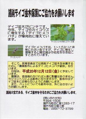 明日12月12日(金)デイゴ並木でヒメコバチの駆除を行います。_e0028387_2130175.jpg