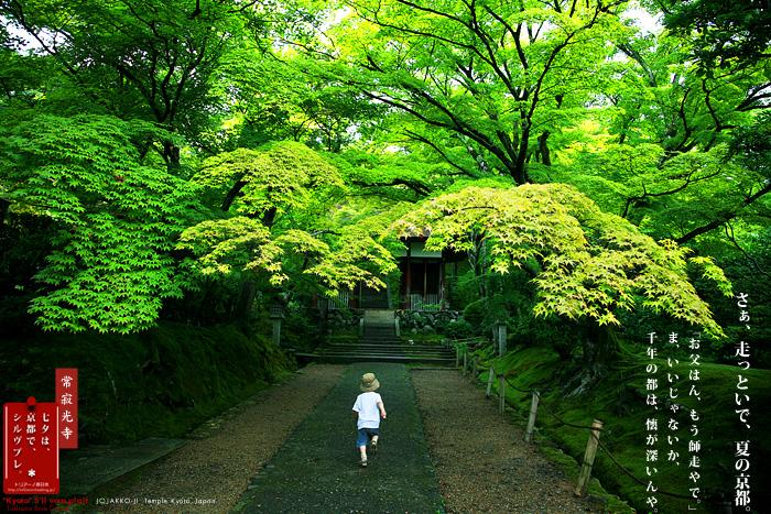 京都シルヴプレ 146   常寂光寺 上巻_f0038408_652996.jpg