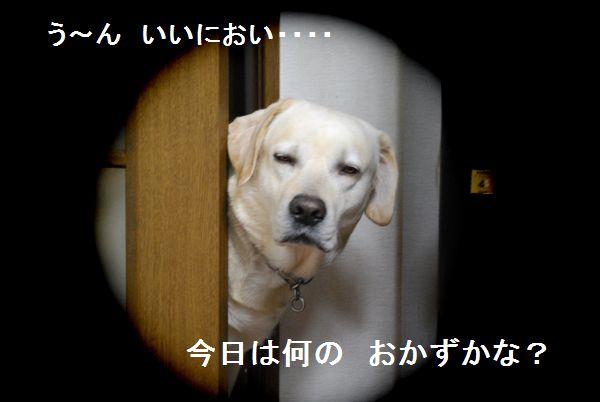 f0183814_15163640.jpg