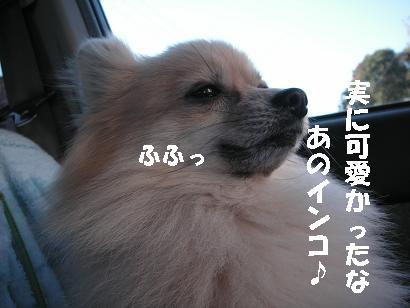 c0179136_065890.jpg