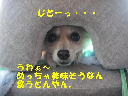 c0179136_071844.jpg