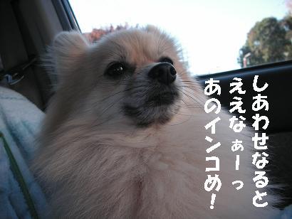 c0179136_07225.jpg