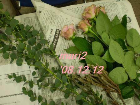 d0020443_22174249.jpg