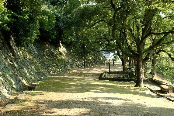 和歌山城公園にて_b0093754_0225391.jpg