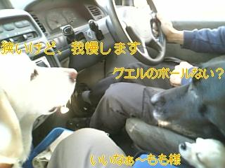 大部屋_f0148927_84592.jpg